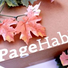 PageHabit YA Box Unboxing ~ October